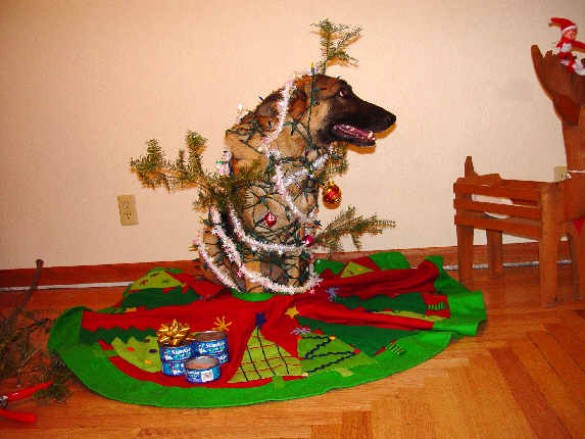 The tree skirt is a nice touch ... wait, where are you going?!? Don't leave me here like THIS!!